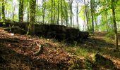 Trail Walk LONGPONT - en forêt de Retz_45_Longpont_la Pierre Fortiere_AR - Photo 110