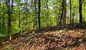 Trail Walk LONGPONT - en forêt de Retz_45_Longpont_la Pierre Fortiere_AR - Photo 99