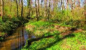 Trail Walk LONGPONT - en forêt de Retz_45_Longpont_la Pierre Fortiere_AR - Photo 209