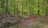 Trail Walk LONGPONT - en forêt de Retz_45_Longpont_la Pierre Fortiere_AR - Photo 28
