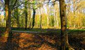 Trail Walk LONGPONT - en forêt de Retz_45_Longpont_la Pierre Fortiere_AR - Photo 4