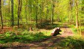 Trail Walk LONGPONT - en forêt de Retz_45_Longpont_la Pierre Fortiere_AR - Photo 143