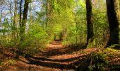 Trail Walk LONGPONT - en forêt de Retz_45_Longpont_la Pierre Fortiere_AR - Photo 197