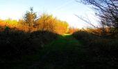 Trail Walk LONGPONT - en forêt de Retz_45_Longpont_la Pierre Fortiere_AR - Photo 14