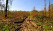 Trail Walk LONGPONT - en forêt de Retz_45_Longpont_la Pierre Fortiere_AR - Photo 128