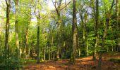 Trail Walk LONGPONT - en forêt de Retz_45_Longpont_la Pierre Fortiere_AR - Photo 25
