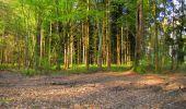 Trail Walk LONGPONT - en forêt de Retz_45_Longpont_la Pierre Fortiere_AR - Photo 7