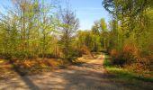 Trail Walk LONGPONT - en forêt de Retz_45_Longpont_la Pierre Fortiere_AR - Photo 77