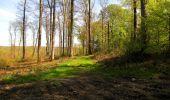 Trail Walk LONGPONT - en forêt de Retz_45_Longpont_la Pierre Fortiere_AR - Photo 140