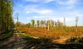 Trail Walk LONGPONT - en forêt de Retz_45_Longpont_la Pierre Fortiere_AR - Photo 138