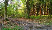 Trail Walk LONGPONT - en forêt de Retz_45_Longpont_la Pierre Fortiere_AR - Photo 2
