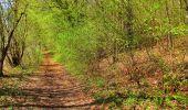 Trail Walk LONGPONT - en forêt de Retz_45_Longpont_la Pierre Fortiere_AR - Photo 154