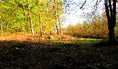 Trail Walk LONGPONT - en forêt de Retz_45_Longpont_la Pierre Fortiere_AR - Photo 18