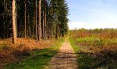 Trail Walk LONGPONT - en forêt de Retz_45_Longpont_la Pierre Fortiere_AR - Photo 187