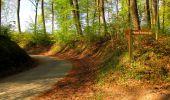 Trail Walk LONGPONT - en forêt de Retz_45_Longpont_la Pierre Fortiere_AR - Photo 94