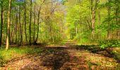 Trail Walk LONGPONT - en forêt de Retz_45_Longpont_la Pierre Fortiere_AR - Photo 172