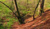 Trail Walk LONGPONT - en forêt de Retz_45_Longpont_la Pierre Fortiere_AR - Photo 64