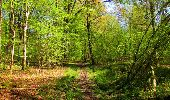 Trail Walk LONGPONT - en forêt de Retz_45_Longpont_la Pierre Fortiere_AR - Photo 192