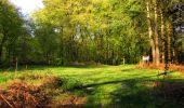 Trail Walk LONGPONT - en forêt de Retz_45_Longpont_la Pierre Fortiere_AR - Photo 31