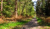 Trail Walk LONGPONT - en forêt de Retz_45_Longpont_la Pierre Fortiere_AR - Photo 181