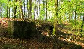 Trail Walk LONGPONT - en forêt de Retz_45_Longpont_la Pierre Fortiere_AR - Photo 111