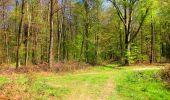 Trail Walk LONGPONT - en forêt de Retz_45_Longpont_la Pierre Fortiere_AR - Photo 191