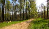 Trail Walk LONGPONT - en forêt de Retz_45_Longpont_la Pierre Fortiere_AR - Photo 118