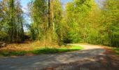 Trail Walk LONGPONT - en forêt de Retz_45_Longpont_la Pierre Fortiere_AR - Photo 86