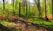 Trail Walk LONGPONT - en forêt de Retz_45_Longpont_la Pierre Fortiere_AR - Photo 144