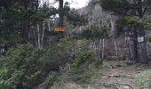 Trail Walk PORTE-PUYMORENS - lacs Pallet, Font Vive et Lanoux - Photo 10