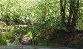 Trail Other activity VILLENEUVE-LA-DONDAGRE - 15 mai suite - Photo 1
