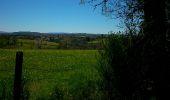 Randonnée Marche SAINT-PRIEST-DES-CHAMPS - La Maziere  - Photo 3