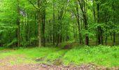 Randonnée Marche LONGPONT - en foret de Retz_46_Longpont_Largny sur Automne_AR - Photo 4