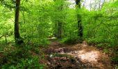 Randonnée Marche LONGPONT - en foret de Retz_46_Longpont_Largny sur Automne_AR - Photo 14