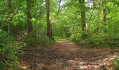 Randonnée Marche LONGPONT - en foret de Retz_46_Longpont_Largny sur Automne_AR - Photo 12