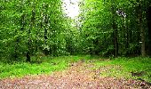 Randonnée Marche LONGPONT - en foret de Retz_46_Longpont_Largny sur Automne_AR - Photo 5
