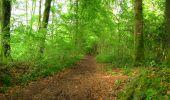 Randonnée Marche LONGPONT - en foret de Retz_46_Longpont_Largny sur Automne_AR - Photo 13