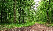 Randonnée Marche LONGPONT - en foret de Retz_46_Longpont_Largny sur Automne_AR - Photo 7