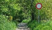 Trail Walk Namur - wépion 17-05-16 - Photo 1