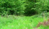 Trail Walk DAMPLEUX - en forêt de Retz_80_sur la Route Tortue et la Route Droite - Photo 293