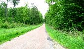Trail Walk DAMPLEUX - en forêt de Retz_80_sur la Route Tortue et la Route Droite - Photo 294