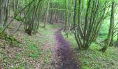 Randonnée Marche Viroinval - marche nordique vierve - Photo 10