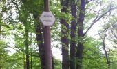 Randonnée Marche Viroinval - marche nordique vierve - Photo 8
