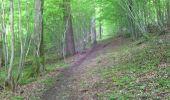 Randonnée Marche Viroinval - marche nordique vierve - Photo 5