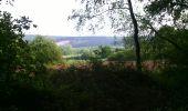 Randonnée Marche Viroinval - marche nordique vierve - Photo 3