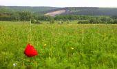 Randonnée Marche Viroinval - marche nordique vierve - Photo 1