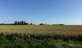 Randonnée Marche VILLENEUVE-LA-DONDAGRE - Villages du Gâtinais en Bourgogne - Photo 2