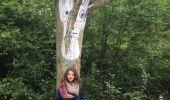 Randonnée Marche Gesves - GESVES-village de HAUT-BOIS-Sentier d'art dans la nature - Photo 1