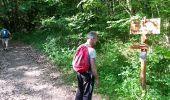 Randonnée Marche ROQUEFIXADE - 02 - ROQUEFIXADE à MONTSEGUR -  Chemin des Bons-Hommes GR107 ou sentier cathare 367 - Photo 10