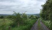 Randonnée Marche Wellin - Balade au Pays de Wellin - De Halma à Wellin - Photo 4